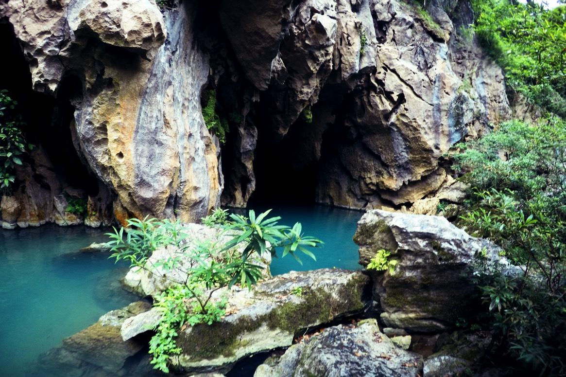 Natur Pur im Phong Nha Ke Bang Nationalpark